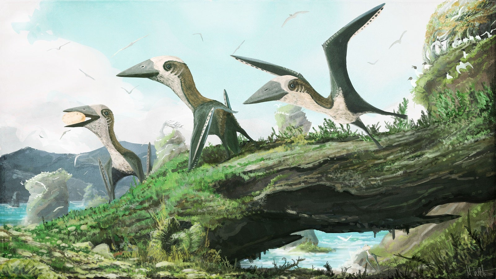 This Bizarre Flying Reptile Was No Larger Than A Cat