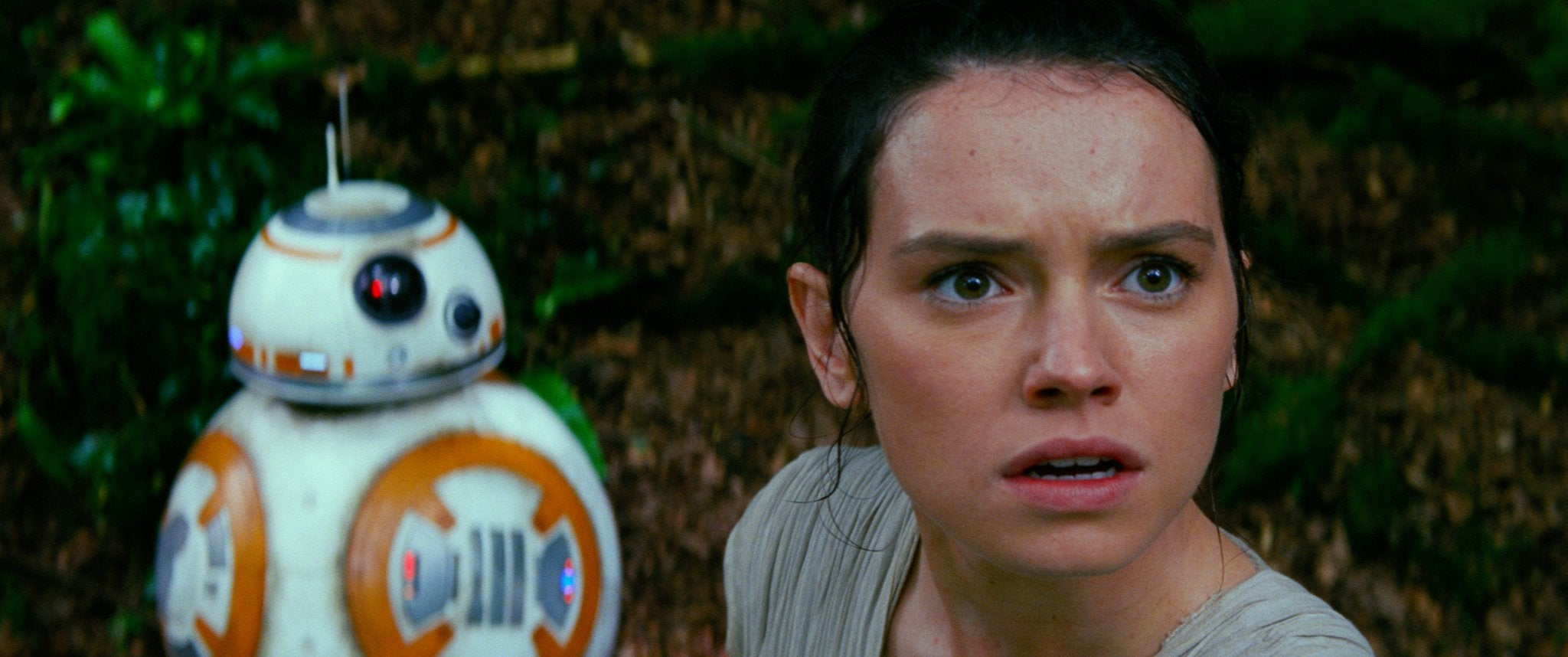 Rey's Parents Are Not In Star Wars: The Force Awakens