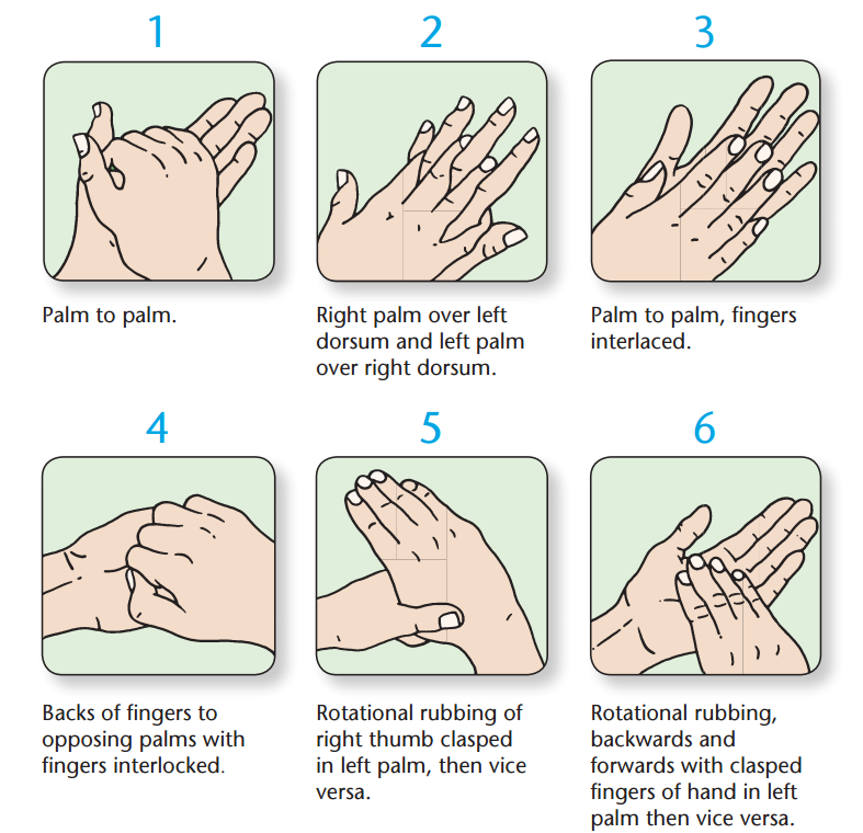 six steps to effective handwashing 2016-9-6  infection control transmission of  six steps in routine handwashing with soap and water  when done correctly is an effective way for hospital staff to.