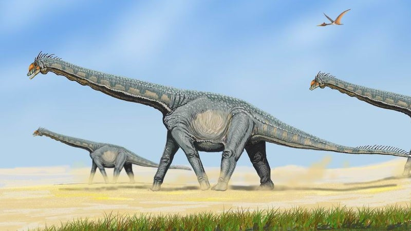 Gigantic Dinosaurs Had To Grow Freakishly Fast