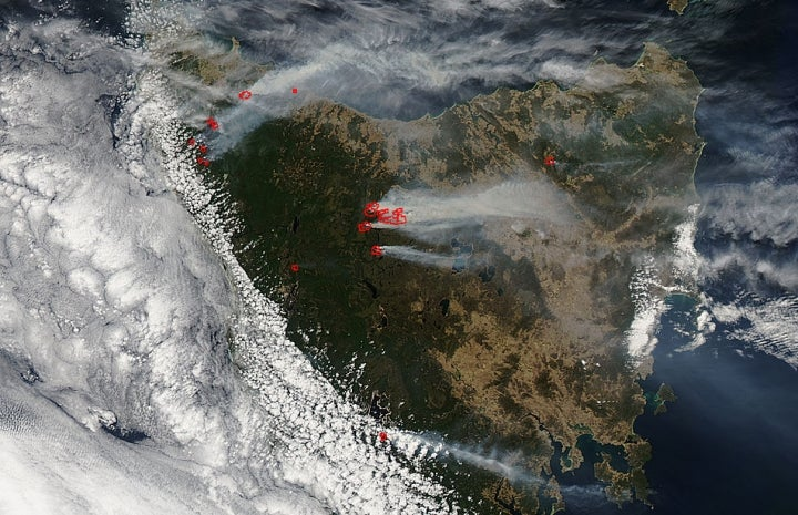 One of the Oldest Forests on Earth Has Been Burning For Weeks