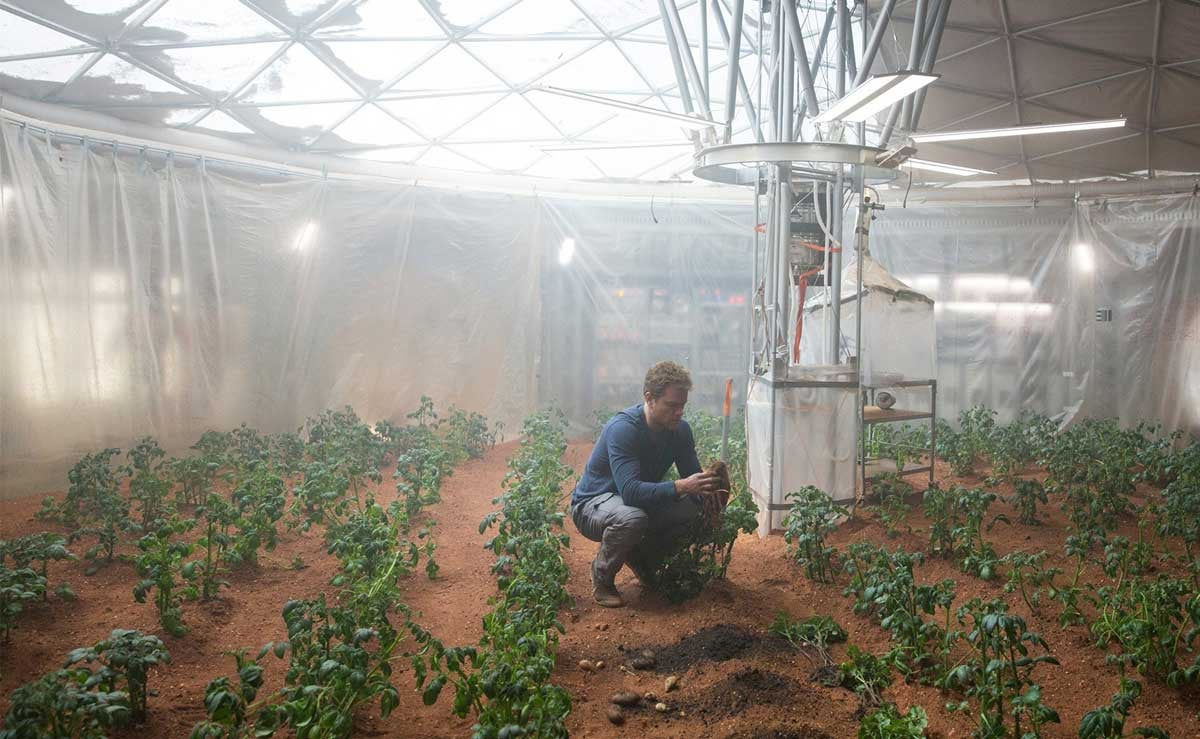 That Viral Photo of The Martian DVD Next to Potatoes Is No Accident