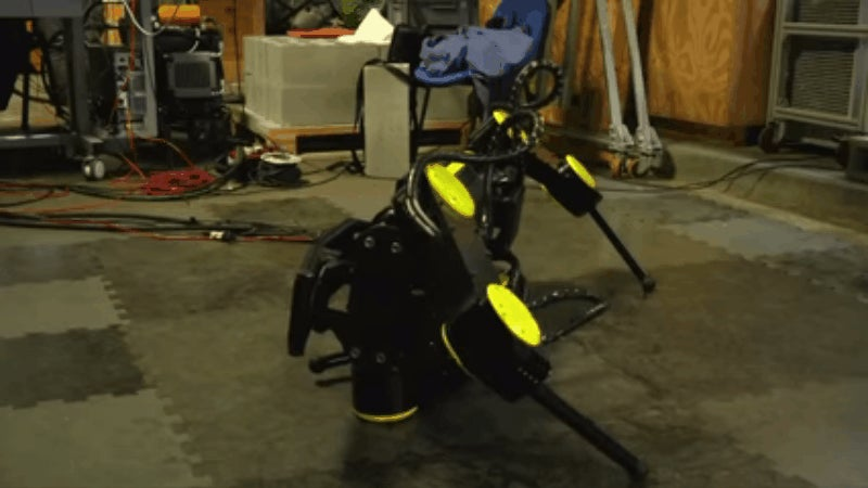 Robotic Critters Make Excellent Rescue Dogs