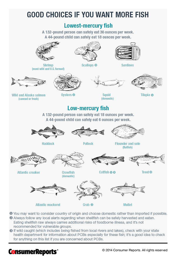 Know which fish are low in mercury with this chart for Fish with high levels of mercury