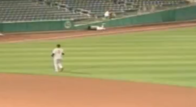 Giants Minor Leaguer Dives Head First Into Outfield Wall
