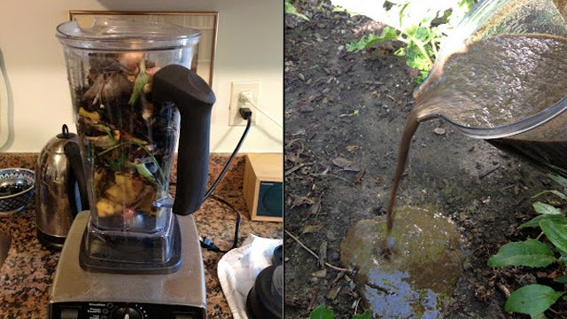 http://lifehacker.com/5994471/blend-your-old-food-scraps-for-instant-compost