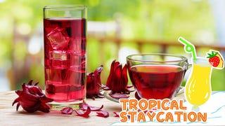 Crimson crush: Sorrel is the ultimate tropical tisane