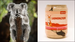 Eat peanut butter, save koalas