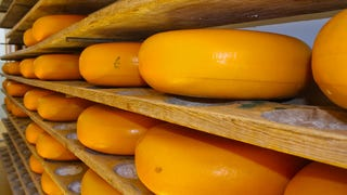 Ultra-rare 20-year Wisconsin cheddar will be sold for $209 per pound