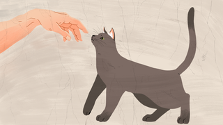 Illustration for article titled How to Keep Your Pets from Ruining Your Stuff
