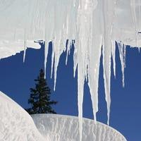 icecolddavis