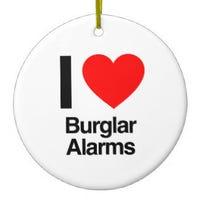 queef-burglar