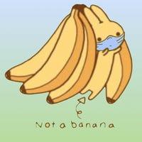bananabunny