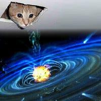 ceiling-cat
