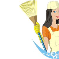 ladymaidservices