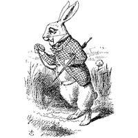 thatwhiterabbit