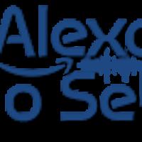 alexaechosetup1