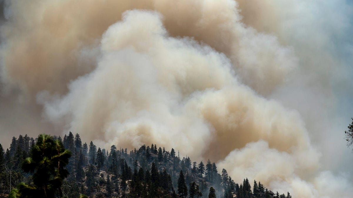 gizmodo.com - Whitney Kimball - Notorious Wildfire-Causing Power Company PG&E to Finally Bury Some of Its Power Lines
