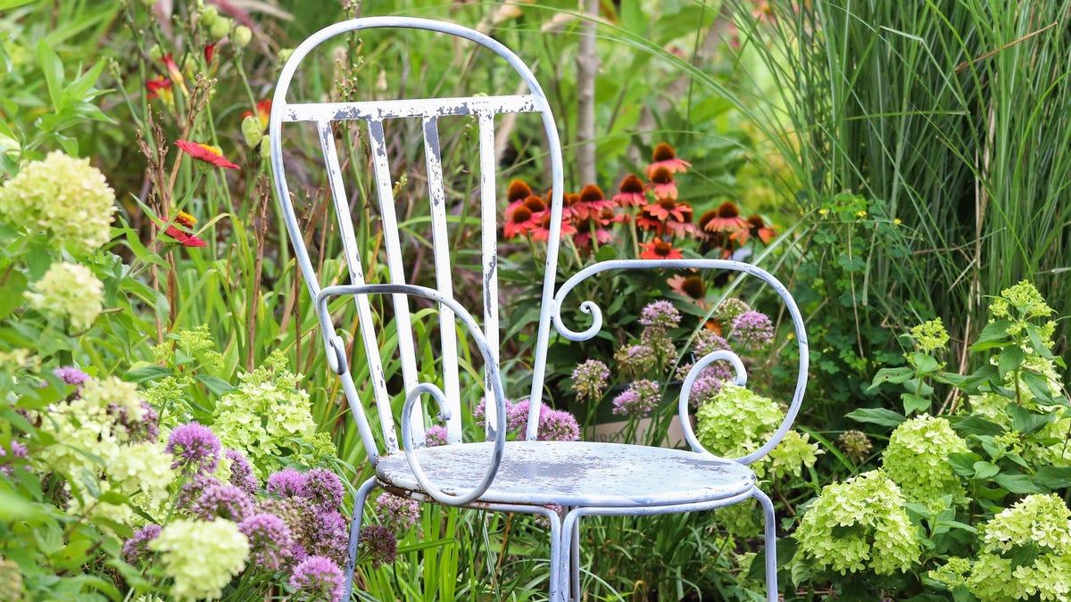 For a Healthier Garden, Grow Native Plants