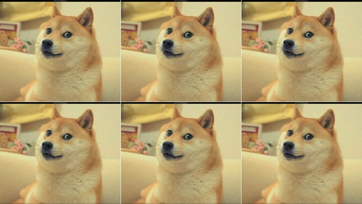Doge Feet Pics Meme - apsgeyser