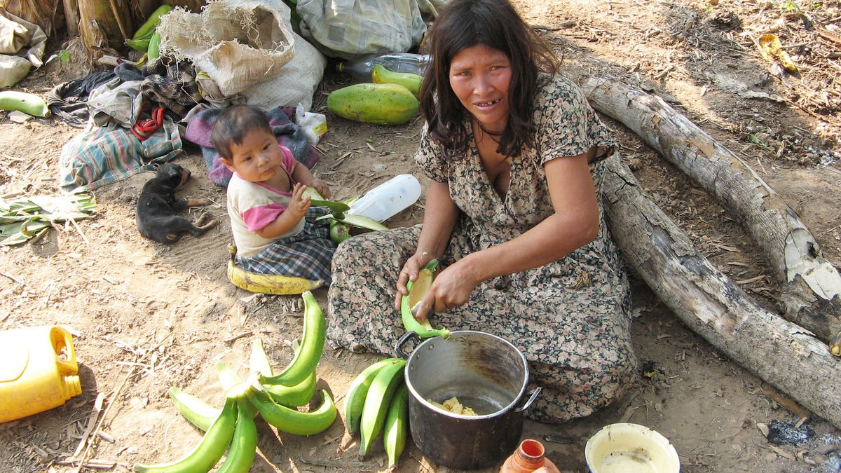 En esta tribu de Amazonas los cerebros no envejecen como los nuestros
