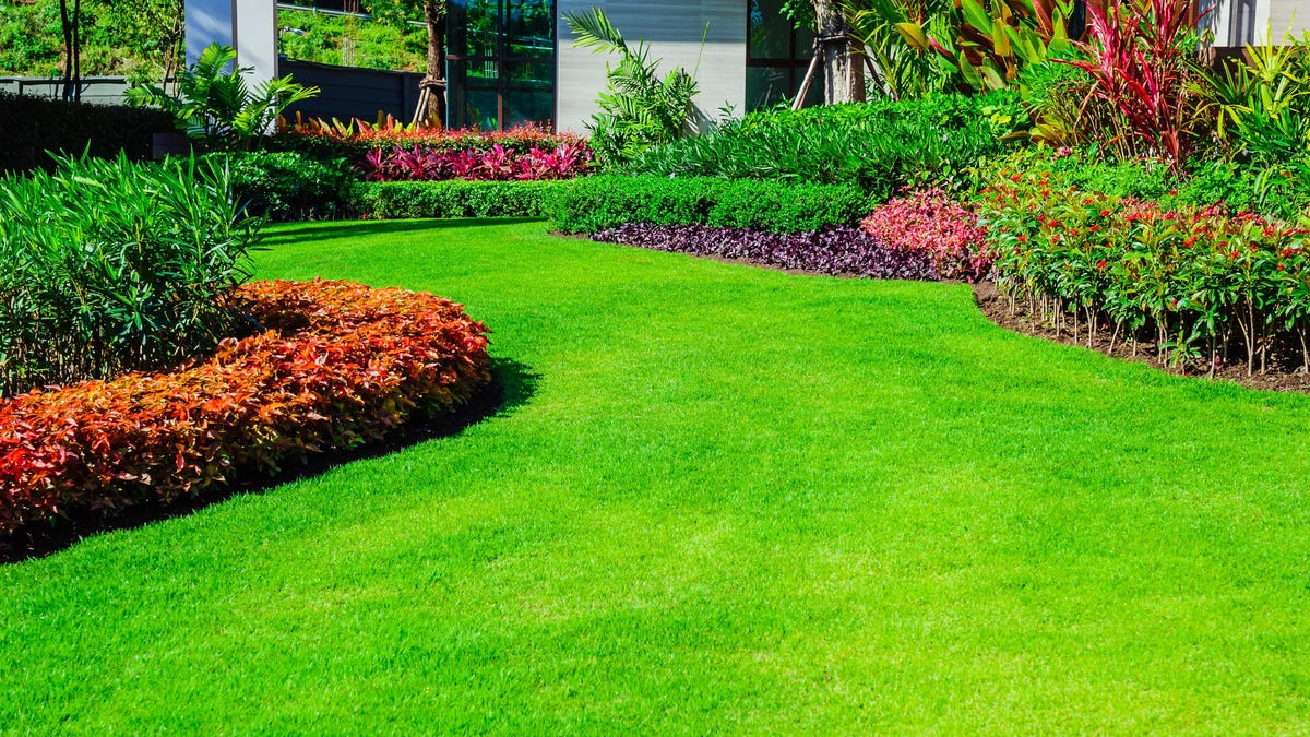 10 Ways to Grow a Greener, Healthier Lawn