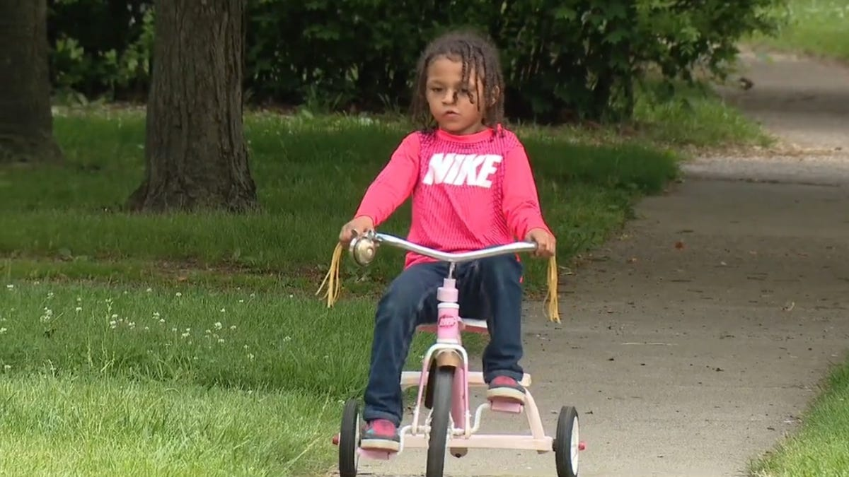 Black Michigan Boy Shot in Arm After Retrieving Bike From Neighbor's Yard. Neighbor Arrested and Released 3 Days Later