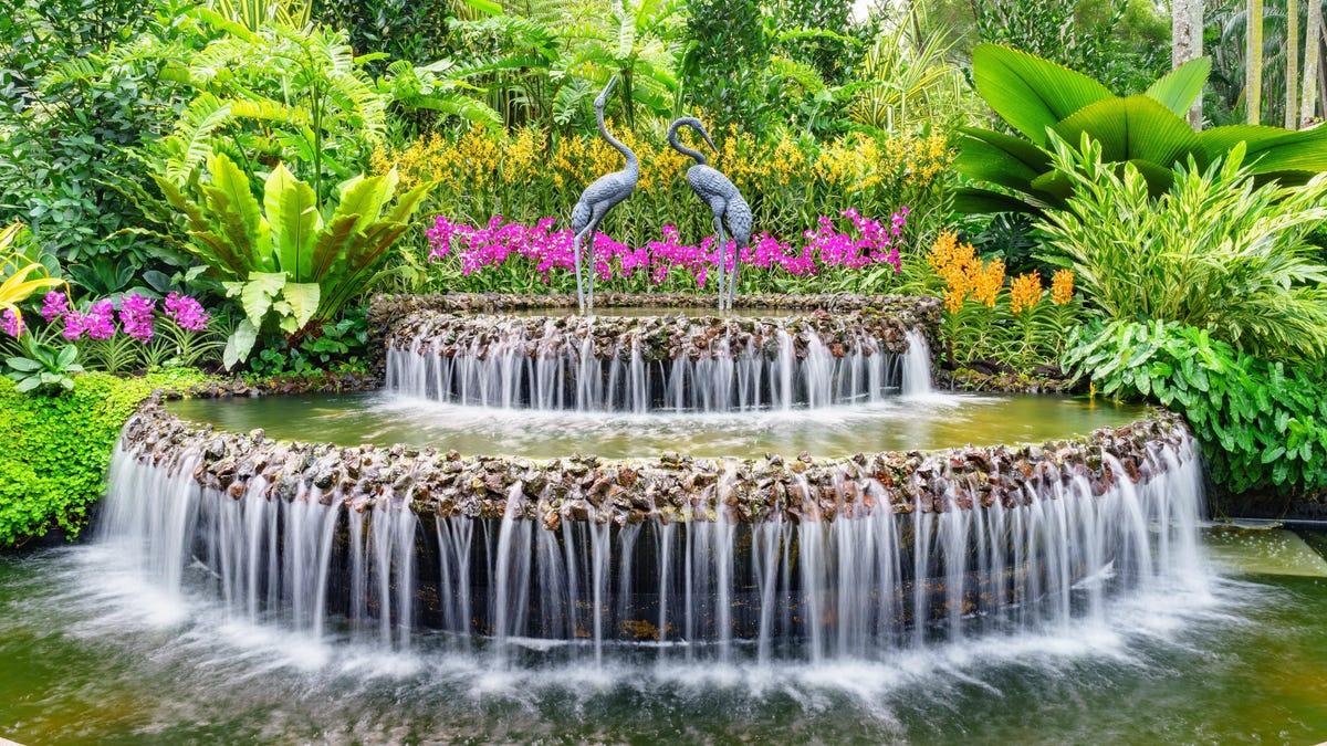 Botanical Gardens-Inspired Decor Tips for Your Home