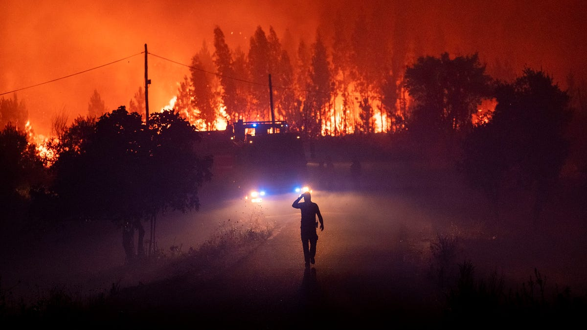 The IPCC Warns This Is a Make or Break Decade for Humanity