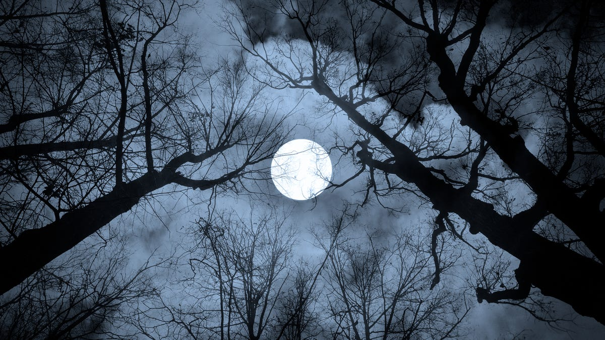 How Each Full Moon Got Its Name (and When to See Them)