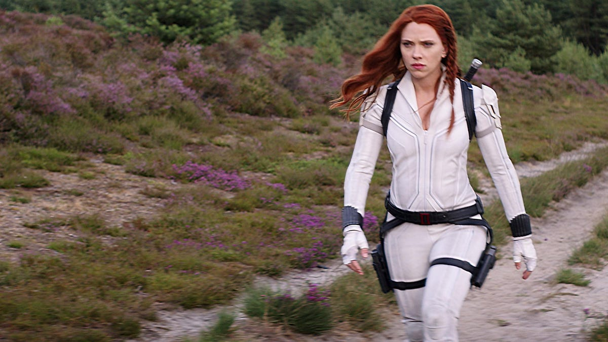 Black Widow Was Meant to Set Up a Falcon and Winter Soldier Connection