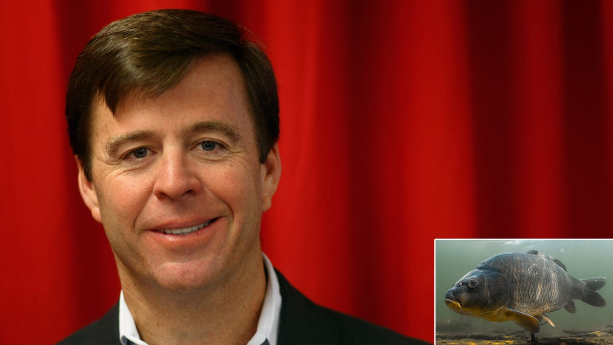 Subway CEO Apologizes For Trusting Fish Who Falsified Documents To Pass As Tuna