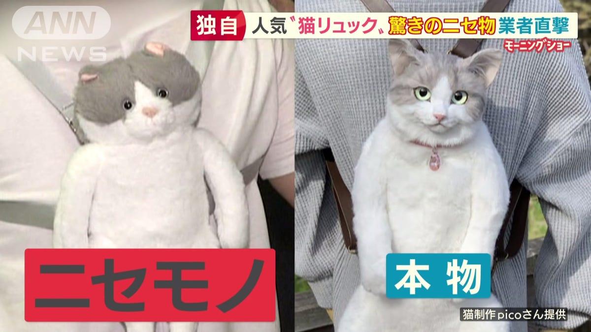 Beware Of Fake Cat-Shaped Backpacks