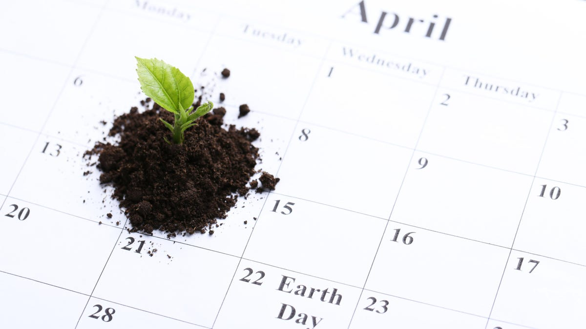 Generate a Custom Planting Calendar With This Site