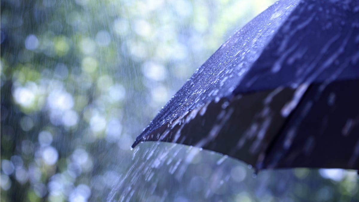 Do You Need an Umbrella Insurance Policy?