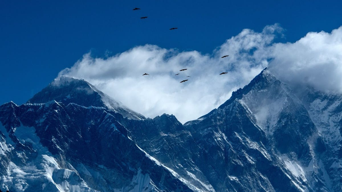 Mount Everest records first COVID case, somehow - deadspin