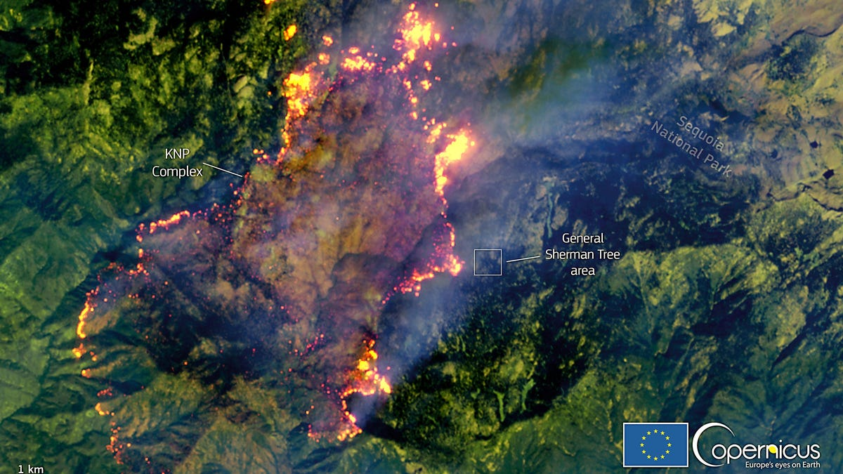 Satellite Image Shows How Close KNP Complex Fire Is to Sequoia's Giant Forest