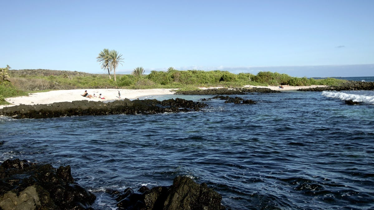 Wanna Visit the Galápagos Islands? It Could Soon Cost You a Lot More