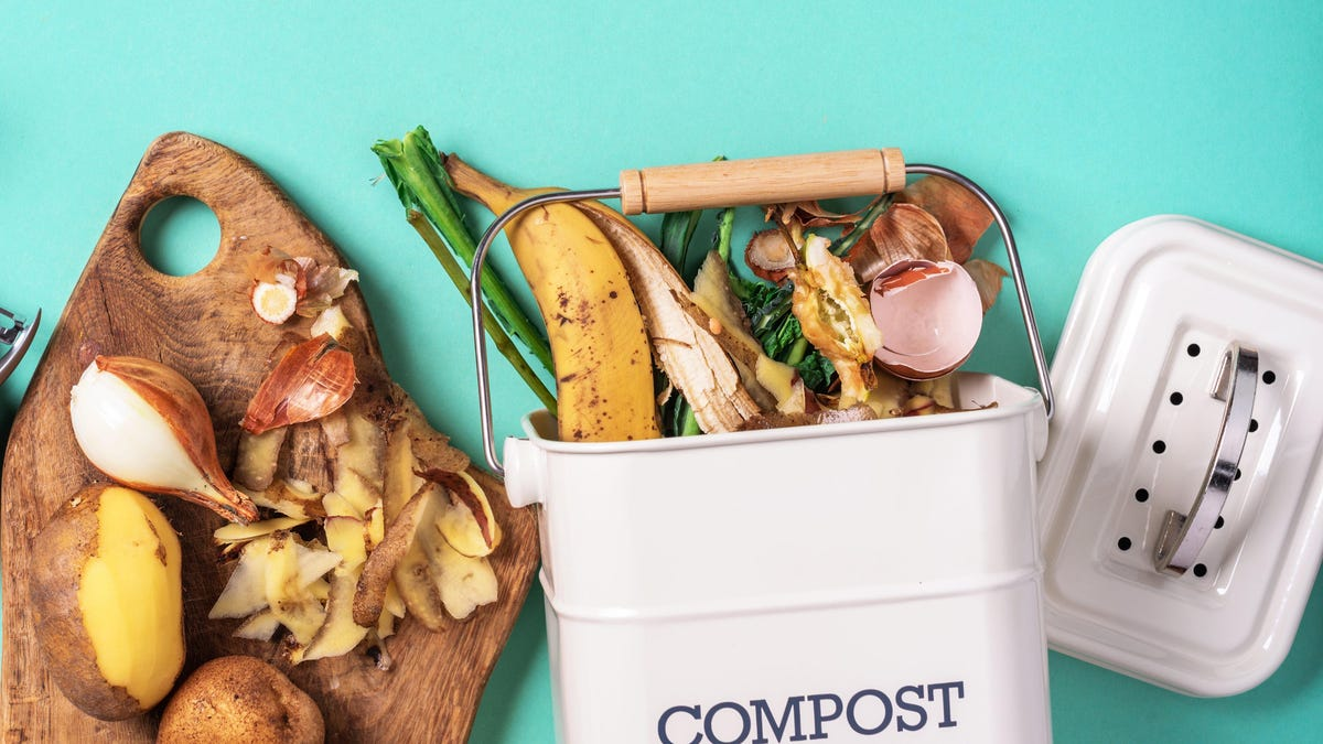 Why You Should Line Your Compost Bin With Paper Towels