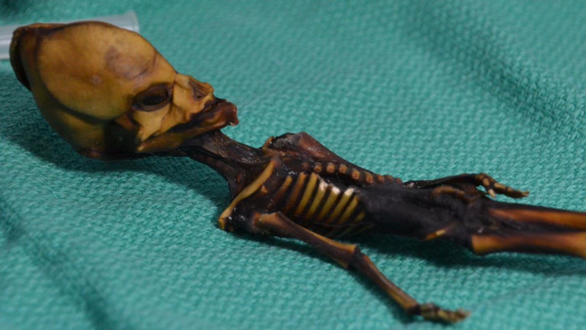 Experts Say Recent 'Alien' Mummy Study Was Deeply Flawed and Unethical
