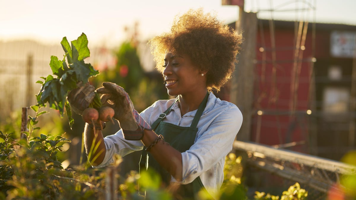 Do These Gardening Tasks Based on How Much Time You Have