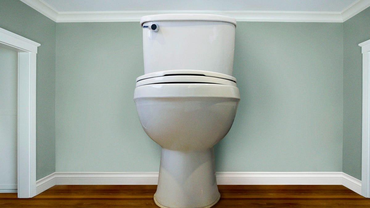 Luxury Condo Boasts Floor-To-Ceiling Toilets