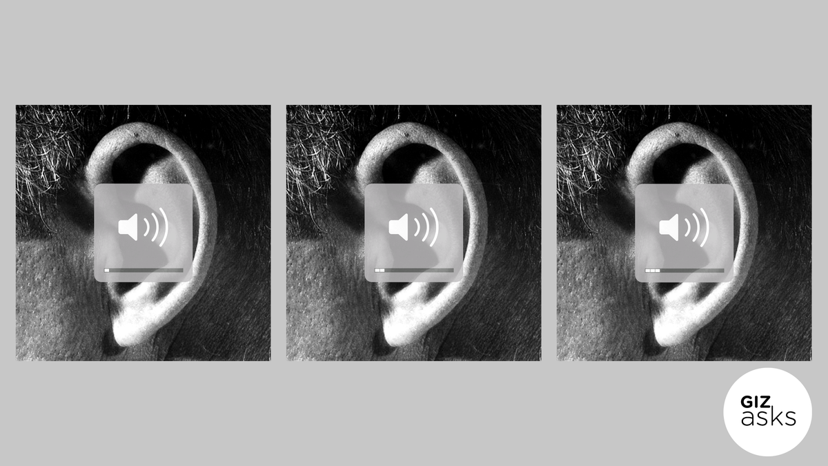 Can You Train Your Ears to Become More Sensitive?