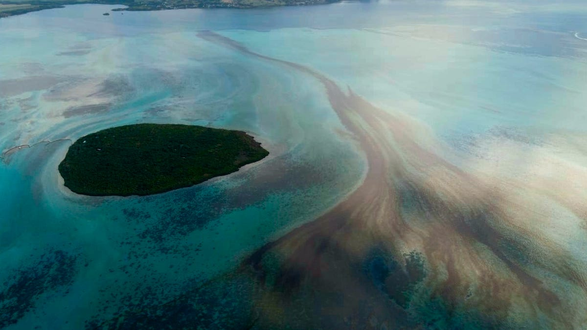 Por qué en Mauricio están usando pelo humano contra el derrrame