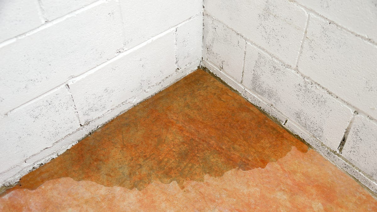 How to Keep Your Basement from Flooding When Snow & Ice Start to Melt