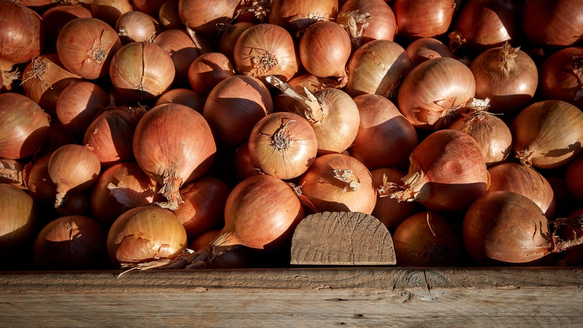 Onions Sold in 37 States Linked to Salmonella Outbreak in U.S.