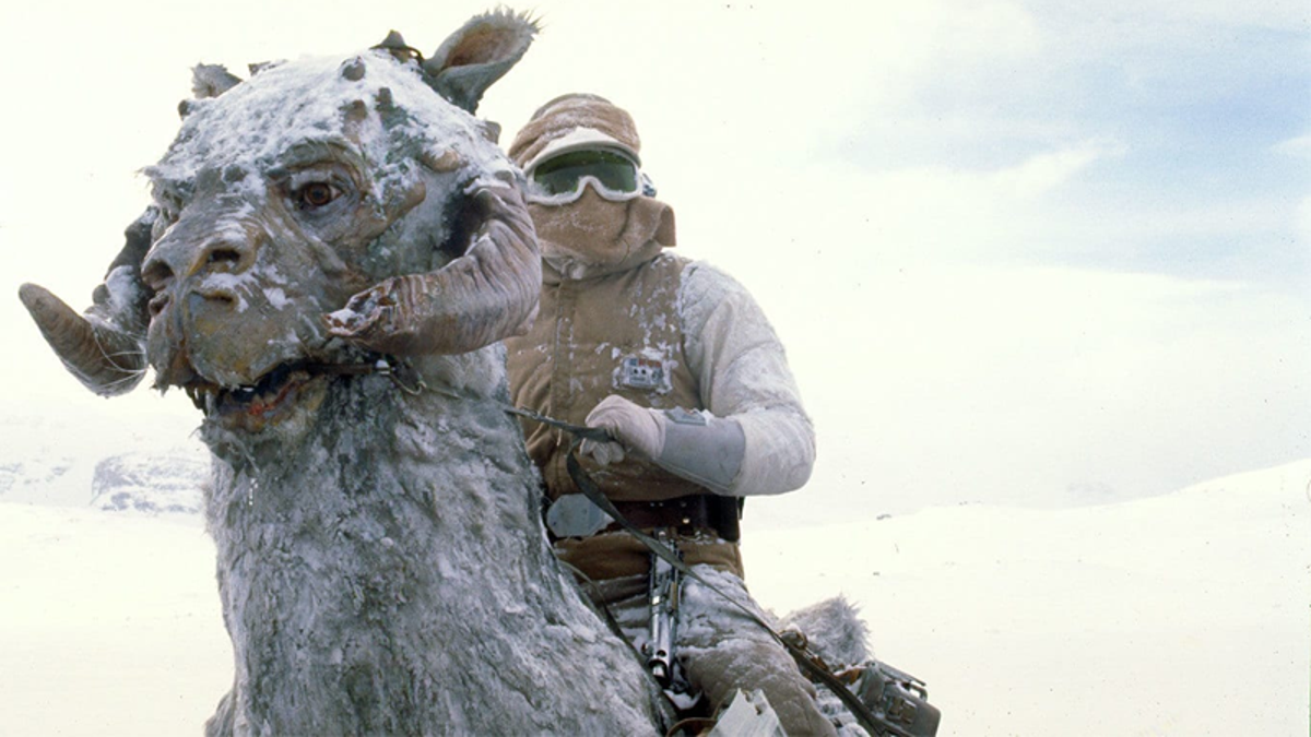 You're Not Meant to Capitalize Star Wars' 'tauntaun'—and There's a Suitably Weird Reason Why