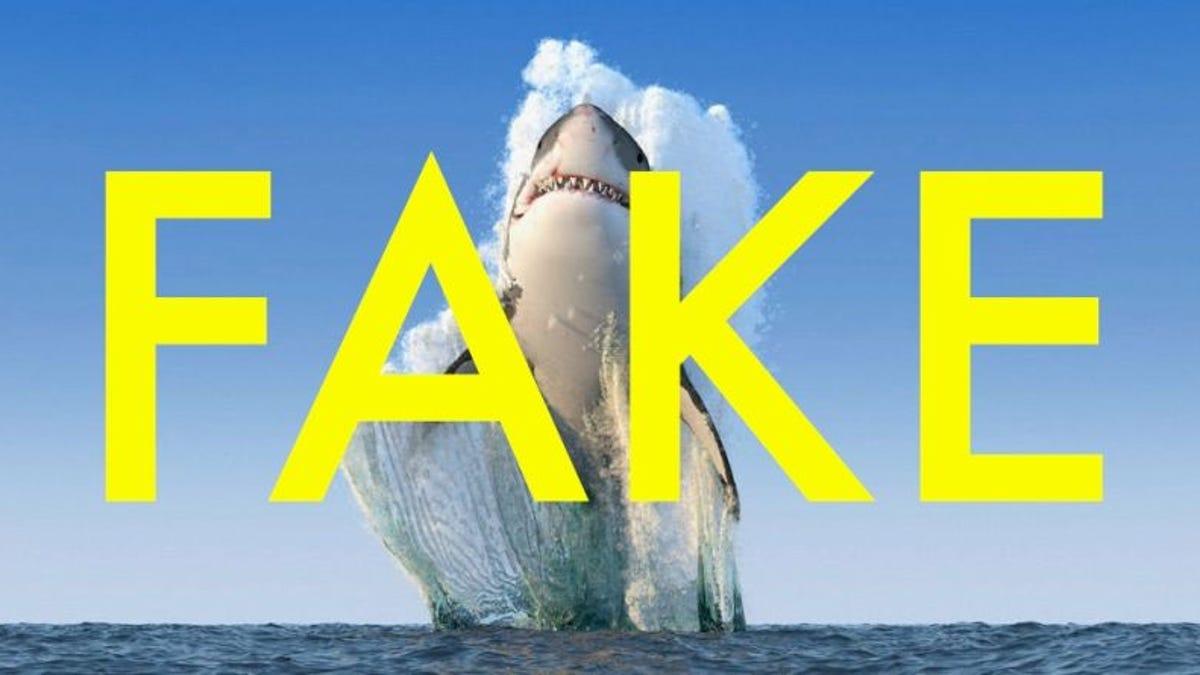 Ataque Tiburon Estrella Porno Fake 50 imágenes virales de 2016 que son completamente falsas