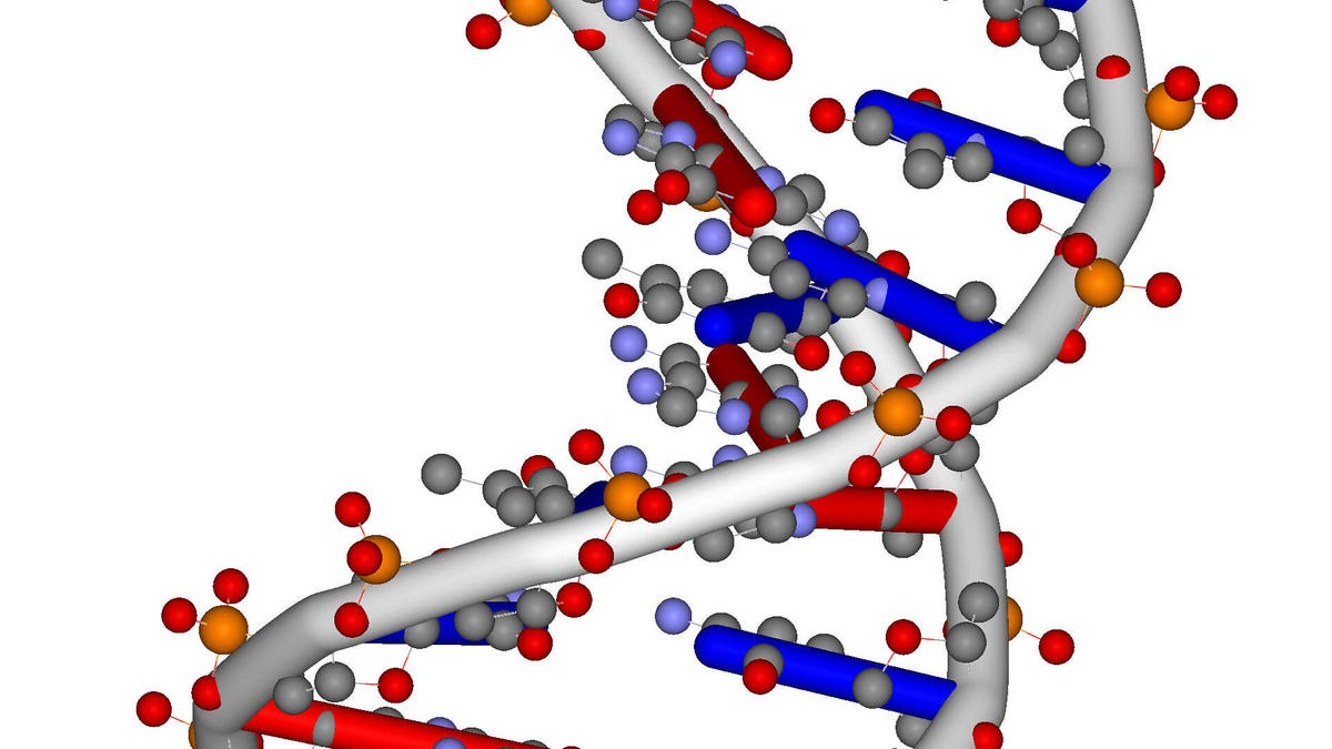 Using a DNA-Based 'Computer,' Scientists Get the Square Root of 900