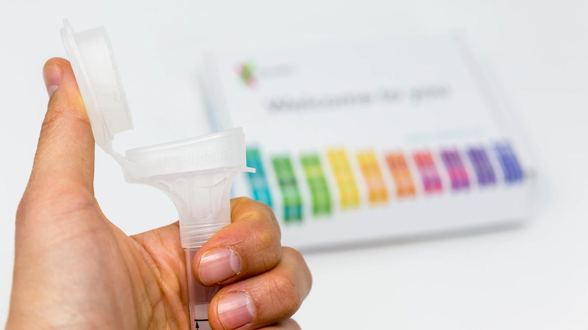 Le regala a la novia un kit de prueba de ADN. Sale muy mal